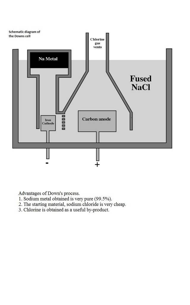 Pcat new biological processes passages question 127961 figure 1 schematic of downs cell ccuart Image collections